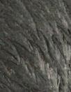 CA designer matted sculpted faux fur - ebony