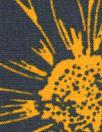 Italian cinnamon/navy daisy print cotton woven