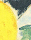 NY designer painted lemons stretch cotton shirting