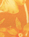 NY designer citrus floral cotton stretch shirting