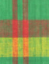 NY designer yarn-dyed plaid cotton - green/red
