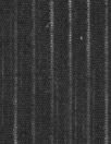 French cotton burnout mini-stripe voile - black