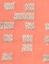 NY designer embroidered voile - coral/platinum squares