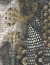 Italian digital viscose knit - earthtones cellular abstract