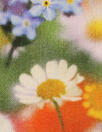 Liberty Art Fabrics: 'Brockenhurst - C' Tana lawn