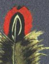 Liberty Art Fabrics: 'Amherst - A' Tana lawn