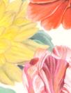 Liberty Art Fabrics: 'Meadow Melody' Tana lawn