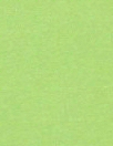 spring green 11 oz. rayon jersey 4-way 1.66 yd