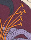 Italian plum/wisteria, orange floral print 4-ply silk