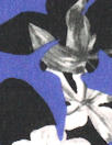 Rebecca Tayl0r dreamy petals silk chiffon