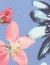 NY designer french blue floral silk georgette