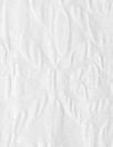 NY designer textured floral matelasse' - white