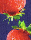 Dutch digital 'strawberry fields' knit Oeko-Tex certified