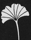 Dutch Oeko-Tex cotton poplin - ginkgo