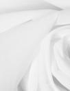 Italian poly/silk/elastane stretch organza - white