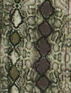 Coordinated fabric thumbnail