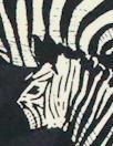 Italian viscose drapey woven - zebra