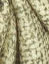 Italian moss/cream speckle printed wool woven 1.875 yd